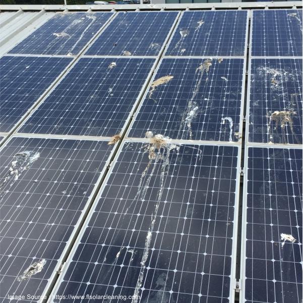 Damage Solar Panel